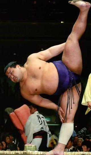Sumo shiko