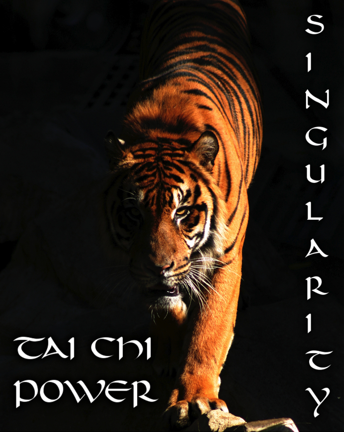 Tai chi power singularity tiger dvd cover