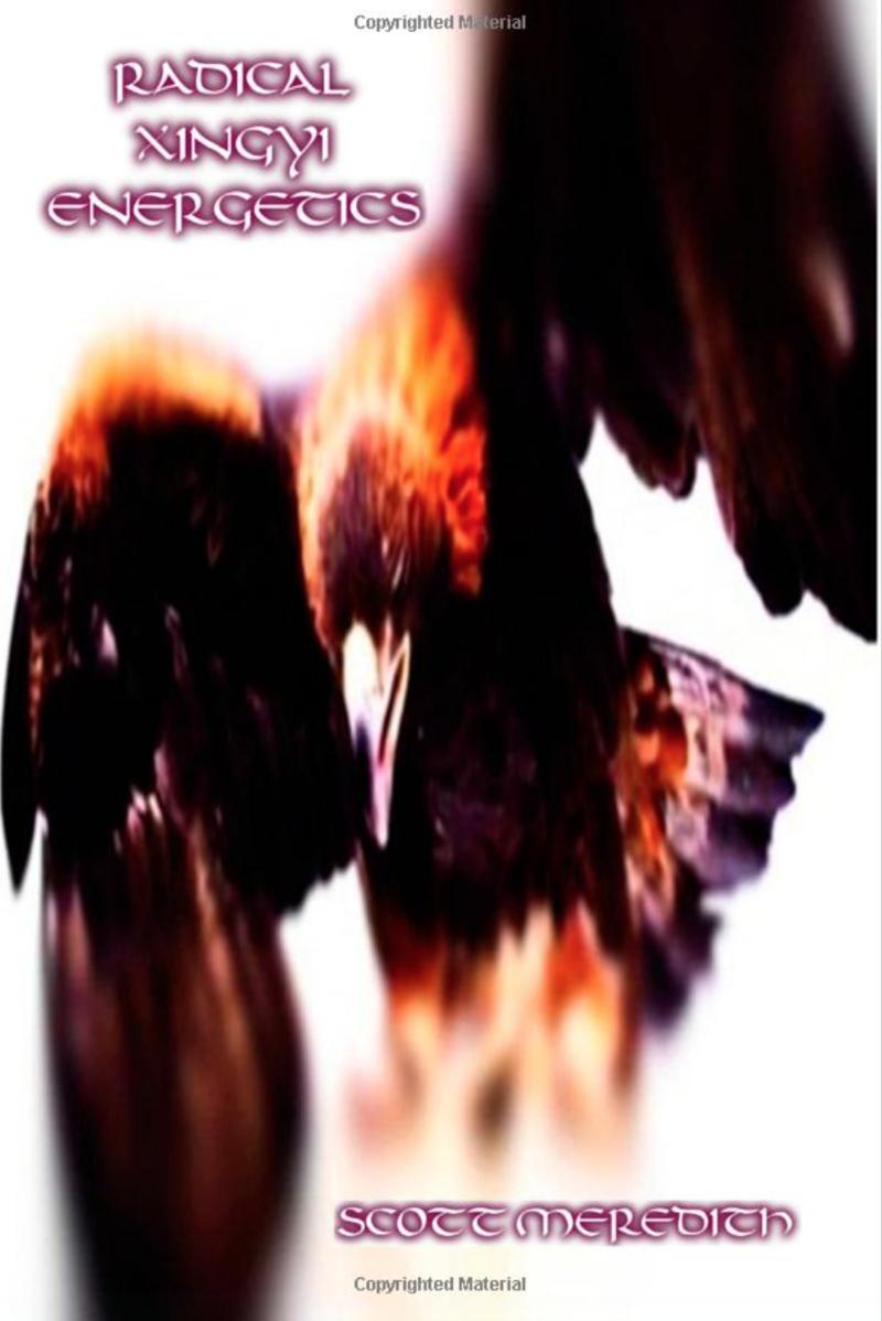 Radical xingyi energetics amazon cover