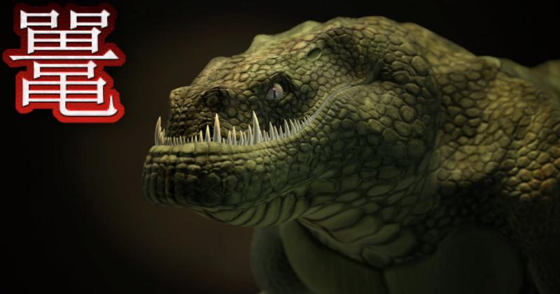 Croc tuo